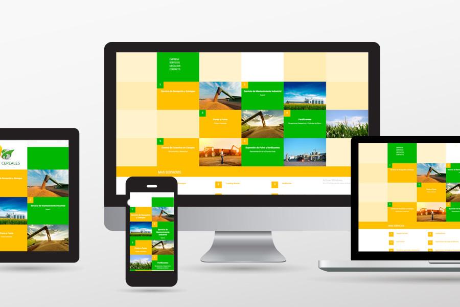 servicios de diseño web y marketing en coahuila de zaragoza